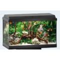Juwel Aquarium Primo 60 LED, 61x31x37cm, schwarz / noir60l, 1x8W, Filter 300L/h