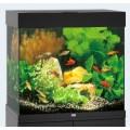 Juwel Aquarium Lido 120  nur Aquarium
