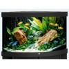 Juwel Aquarium Trigon 190, 98,5x70x60, 190L, 2x28W, Filter 600L/h (Eckaquarium)