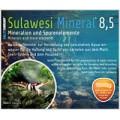 Salty-Shrimp Sulawesi Mineral 8.5  100g